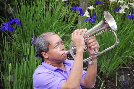 Jazz Musician stock photo, Jazz musician performing in a fllower garden. by OSCAR Williams
