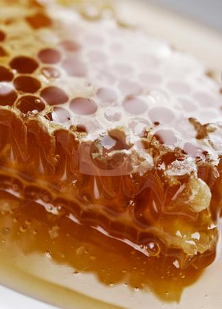 Honey comb stock photo, Piece of honey comb with honey by Liv Friis-Larsen