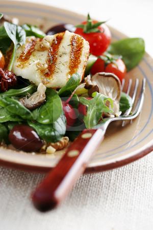 Salad de luxe stock photo, Mediterranean type salad with cherry-tomatoes,baby-spinach,rocket,oyster mushrooms,wallnuts, sundried tomatos and grilled goats cheese by Liv Friis-Larsen