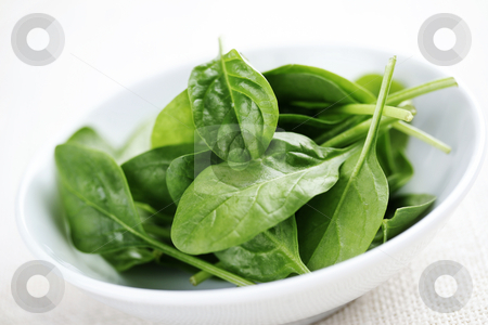 Baby spinach stock photo, Bowl of fresh light baby spinach by Liv Friis-Larsen