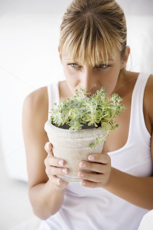Smelling plant stock photo, Young female holding plant up to her nose by Liv Friis-Larsen