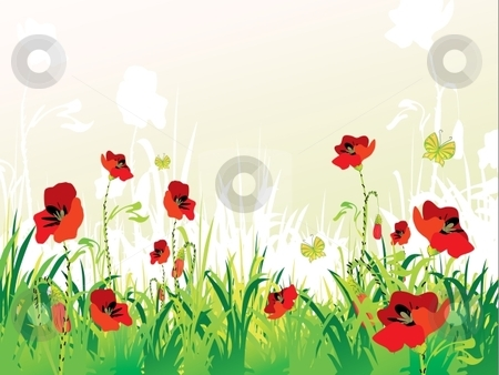 Poppies background stock vector clipart, Red poppies on green field with copy space, vector illustration by Milsi Art