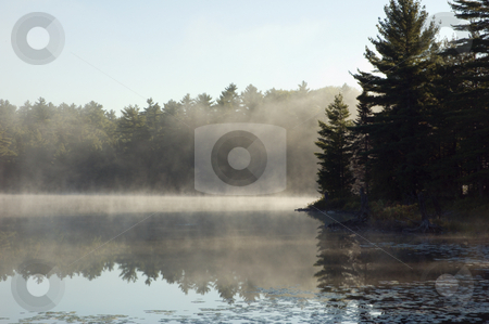 Fog stock photo, Fog above forest lake in Killarney Park in the morning by Pavel Cheiko