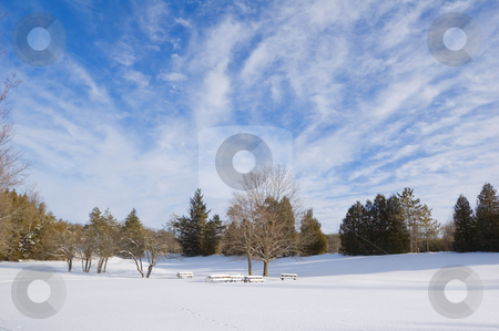 Winter stock photo, Barbecue tables under snow in Ontario park by Pavel Cheiko