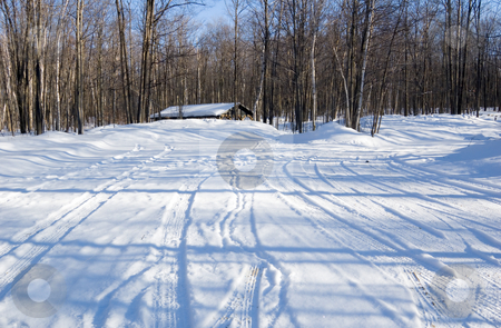 Storehouse in winter forest stock photo, Barbecue tables under snow in Ontario park by Pavel Cheiko