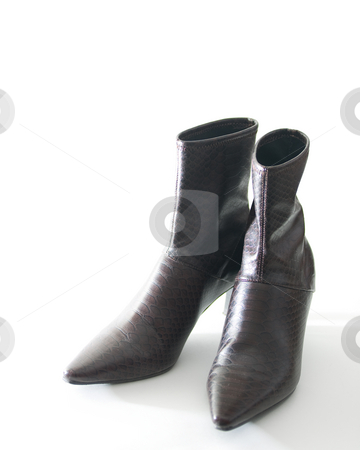 High heel boots stock photo, Stylish women\'s high-heel boots, isolated on white. by Kevin Woodrow