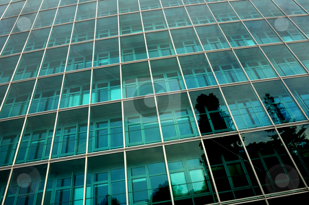 Reflections stock photo, Reflections of trees in the side of a towering, glass-fronted office block by Alistair Scott