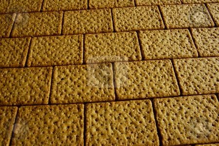 Going crackers? stock photo, A wall made of wholemeal bicuits, close up. by Alistair Scott