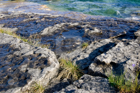 Coastal Rock Shelf stock photo, Flat rocky coastal area with wild grass growing in the cracks, with emerald water in the background. by Kevin Woodrow