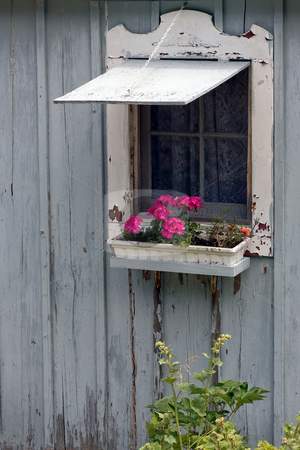 Cottage Window with Flower Box stock photo, An old cottage wall with open window and flower box. by Kevin Woodrow
