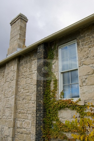 Side of old building stock photo, The side of an old stone building and chimney, with colorful ivy growth. by Kevin Woodrow