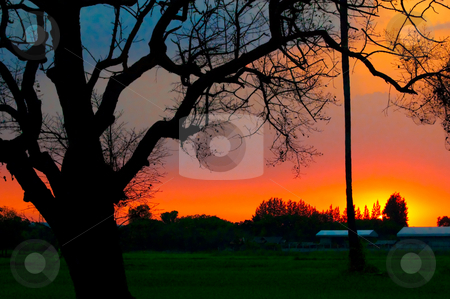 Beautiful Sunset stock photo, Beautiful sunset with vivid colors by Pawee Lorsuwannarat