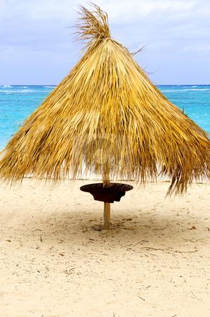 Tropical beach umbrella stock photo, Grass umbrella on sandy Caribbean sea beach by Elena Elisseeva