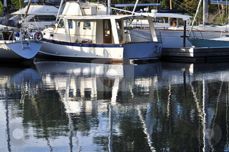 Moored sailboats reflecting in water stock photo, Moored sailboats reflecting in calm water in marina by Elena Elisseeva