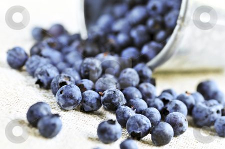 Blueberries stock photo, Fresh blueberries spilling out of a pail close up by Elena Elisseeva
