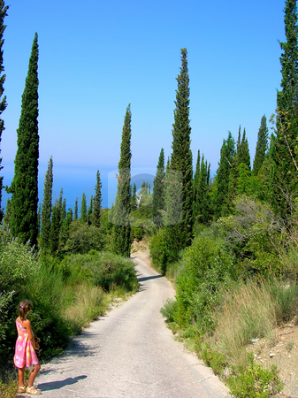 Way between cypresses stock photo, Country curve road between cypresses nearby seashore by Julija Sapic