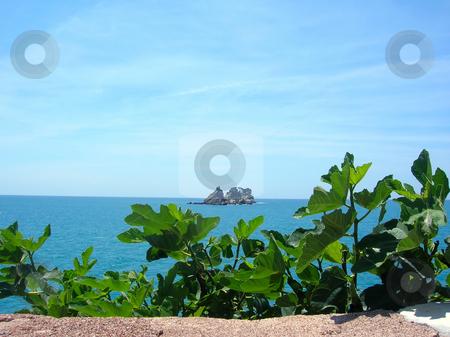 Island in sea over green leaves stock photo, Scenic small island in Adriatic sea in Montenegro by Julija Sapic