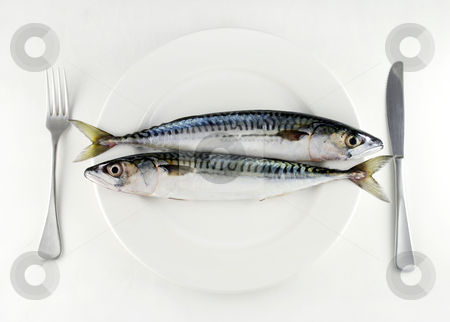 Eat more fish stock photo, Two mackerel on a white plate with knife and fork by Paul Turner