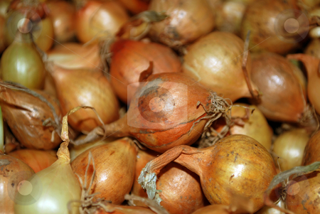 Onion stock photo, Vegetables series ripe golden onion in market by Tudor Antonel adrian