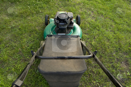 Pushing a Lawn Mower stock photo, An interesting point of what you see while pushing a lawn mower. by Todd Arena