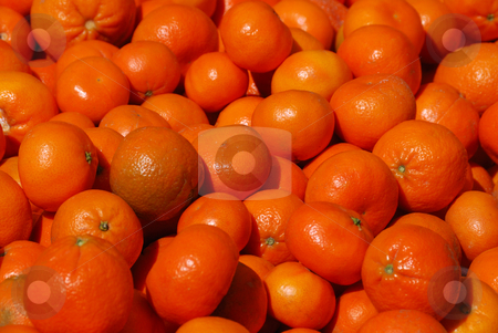 Mandarins stock photo, Pile of mandarins in farmers market on a sunny day. by Denis Radovanovic