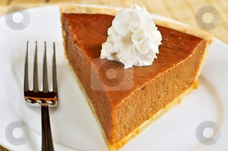 Pumpkin pie stock photo, Slice of pumpkin pie with fresh whipped cream by Elena Elisseeva