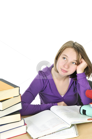 Teenage girl studying stock photo, Teenage school girl studying at the desk by Elena Elisseeva