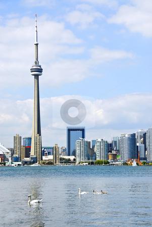 Toronto skyline stock photo, Toronto harbor skyline with CN Tower and skyscrapers by Elena Elisseeva