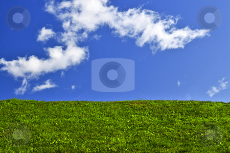 Blue sky and green field stock photo, Blue sky and green grass field background by Elena Elisseeva