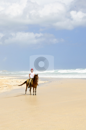 Girl riding horse on beach stock photo, Young girl horseback riding on Caribbean beach by Elena Elisseeva