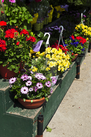Flower baskets for sale stock photo, Flower baskets for sale at flower stand by Elena Elisseeva