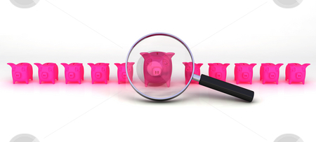 Pigs under investigation stock photo, A bunch of pigs investigated closely by Magnus Johansson