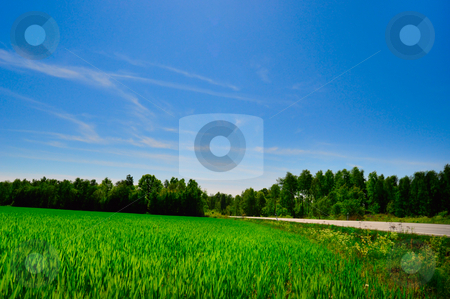 Countryside road stock photo,  by Magnus Johansson
