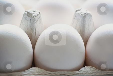 Eggs stock photo, Art Image, Six white eggs in a Eggbox, 420x3125 Pixel, 42,2 MB, 300 dpi by Ute Wingenfeld
