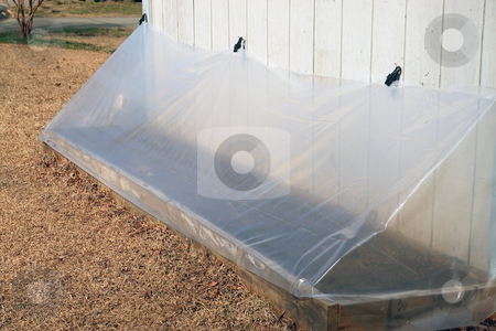 Seedling Greenhouse  stock photo, Small seeding starter tent for new growing season keeps seedings warm, damp and away from frost by Jack Schiffer