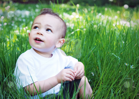 Cute Little Boy stock photo, Adorable little boy playing in the grass on a sunny day. Horizontally framed shot - he is looking up at something out of frame. by Orange Line Media