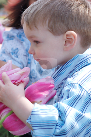 Boy Smelling Flowers stock photo, A side shot of a young boy in a blue shirt smelling flowers. by Orange Line Media