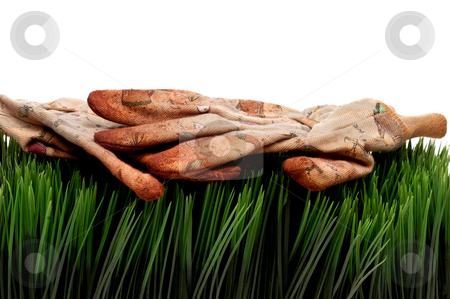 A horizontal view of old worn workgloves on green grass stock photo, A horizontal view of old worn workgloves on green grass by Vince Clements