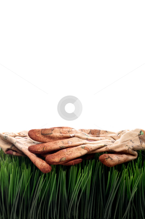 A vertical view of old worn workgloves on green grass stock photo, A vertical view of old worn workgloves on green grass by Vince Clements