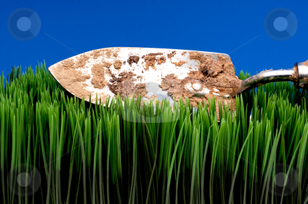 A horizontal view of a dirty garden spade on grass on a blue bac stock photo, A horizontal view of a dirty garden spade on grass on a blue background by Vince Clements