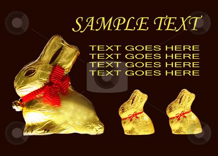 Golden chocolate Easter bunnies stock photo, Twelve isolated golden chocolate Easter bunnies by Christopher Meder