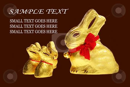 Family of golden chocolate Easter bunnies stock photo, Family of golden chocolate Easter bunnies isolated with area for text by Christopher Meder