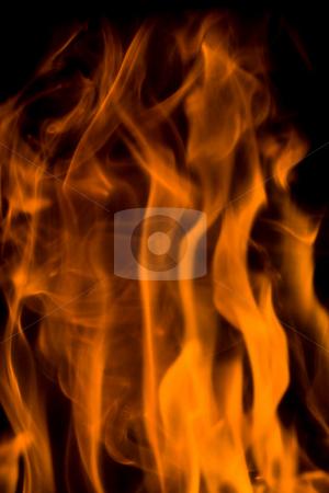 Flames stock photo, Flames by Luca Bertolli