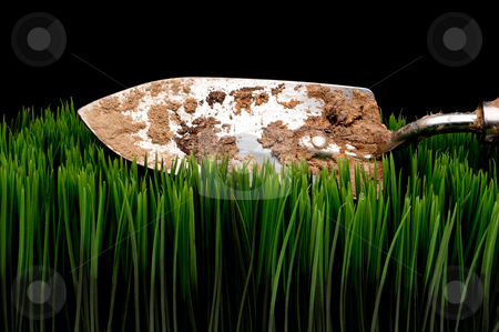 A horizontal view of a dirty garden spade on grass on a black ba stock photo, A horizontal view of a dirty garden spade on grass on a black background by Vince Clements