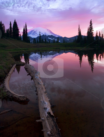 Rainier Sunset Reflections stock photo, Mt. Rainier reflects in the still waters of a small alpine lake at sunset. by Mike Dawson