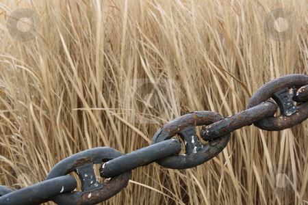 Chain and grass stock photo,  by Chris Torres