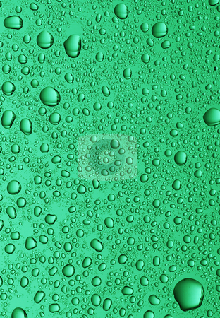 Small water drops stock photo, Large water drops on green glass background by Paul Turner