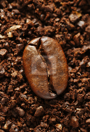 Ground coffee bean stock photo, Single coffee bean on a background of ground coffee by Paul Turner