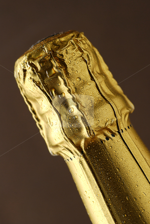 Champagne foil top stock photo, Close up of foil covered champagne cork by Paul Turner