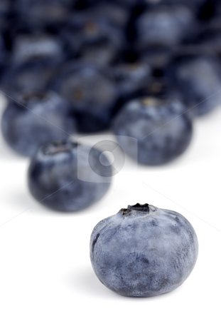 Blueberry stock photo, Blueberries on white background with one isolated blueberry by Paul Turner
